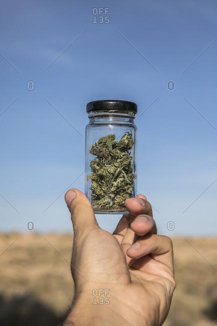 Man hand holding marijuana jar against sky