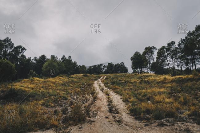 Dirt road in field in Autumn