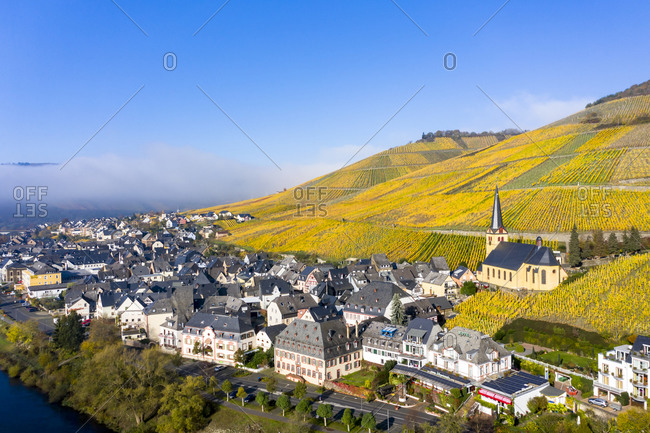 November 5, 2020: Germany- Rhineland-Palatinate- Zeltingen-Rachtig- Town and vineyards by Moselle in autumn- aerial view