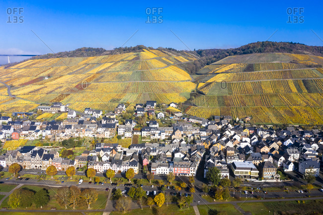 Germany- Rhineland-Palatinate-Zeltingen-Rachtig- Town and vineyards in autumn- aerial view