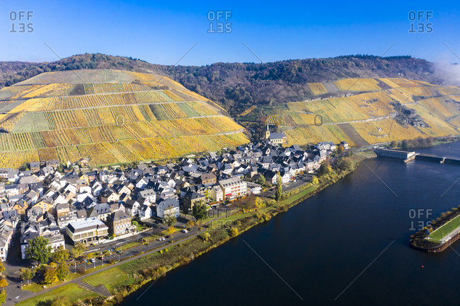 Germany- Rhineland-Palatinate-Zeltingen-Rachtig- Town and vineyards by Moselle in autumn- aerial view