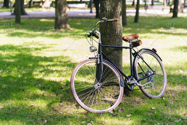 Bicycle parked on grassy field at public park