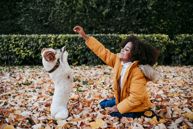 Playful girl playing with dog while sitting at park