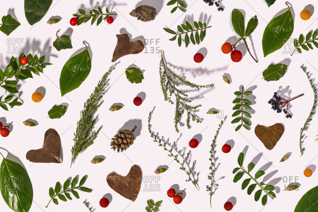 Leaves- pine cones- little branches and strawberry tree fruits in autumn pattern- illustration