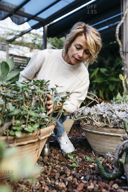 Woman crouching by potted plant at rooftop garden