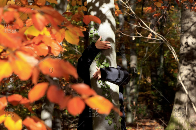Woman hugging tree in autumn forest