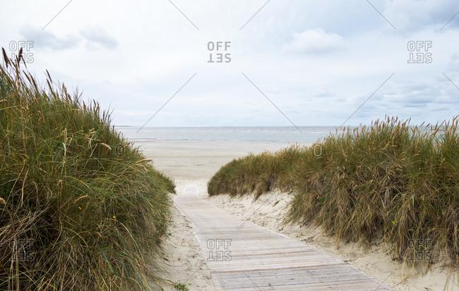 Empty boardwalk stretching across grassy beach