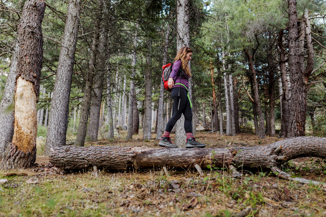 Female trekker balancing while walking on fallen tree in forest at La Pedriza- Madrid- Spain