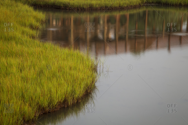 Reflection in marsh, Riverview Park, Swansboro, North Carolina