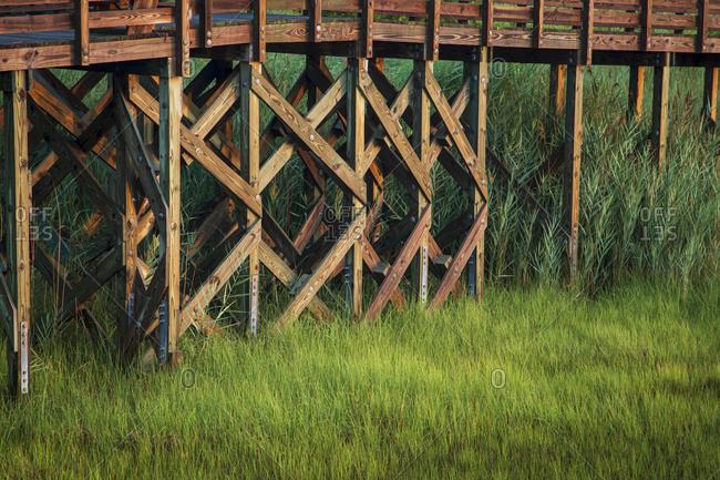 Reeds among dock posts, Riverview Park, Swansboro, North Carolina