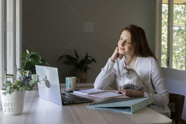 Young woman sitting with cat on lap while working on laptop at home