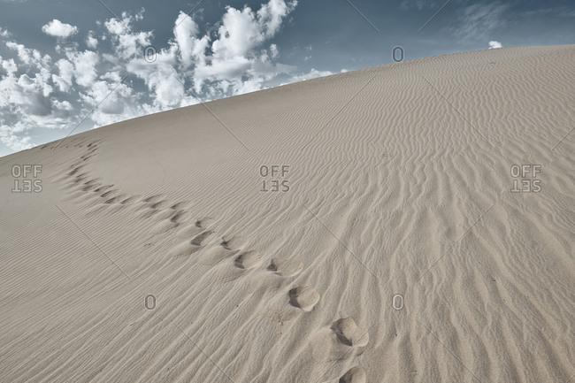 Footprint on sand of Cadiz Dunes at Mojave Desert- Southern California- USA