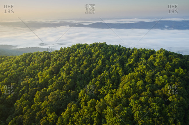 Aerial view of Appalachian forest shrouded in morning fog