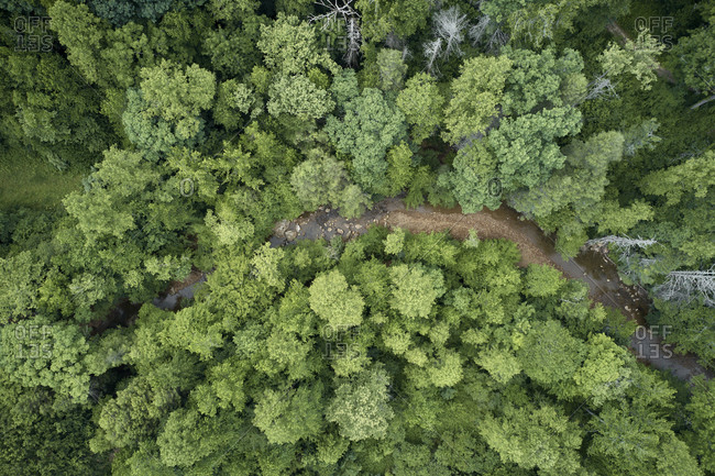 Aerial view of Little Clear Creek flowing through lush green forest