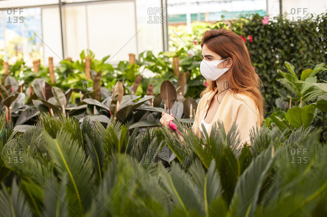 Redhead businesswoman holding digital tablet while examining plant at garden center