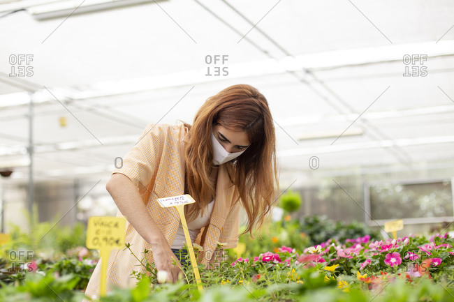 Redhead businesswoman examining plant while standing at garden center