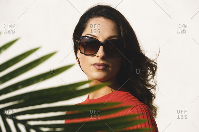 Young brunette woman with palm leaf in front of her face against wall on sunny day