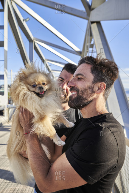 Homosexual couple with dog on footbridge during sunny day