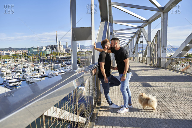 Affectionate gay couple kissing on footbridge during sunny day