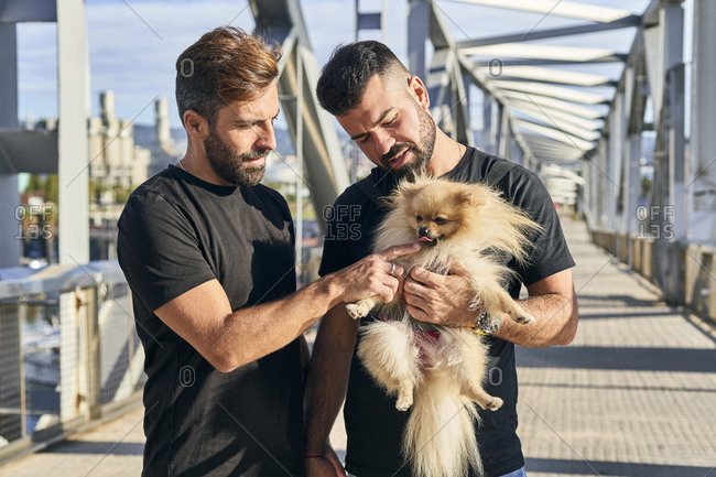 Homosexual couple with dog spending on footbridge during sunny day