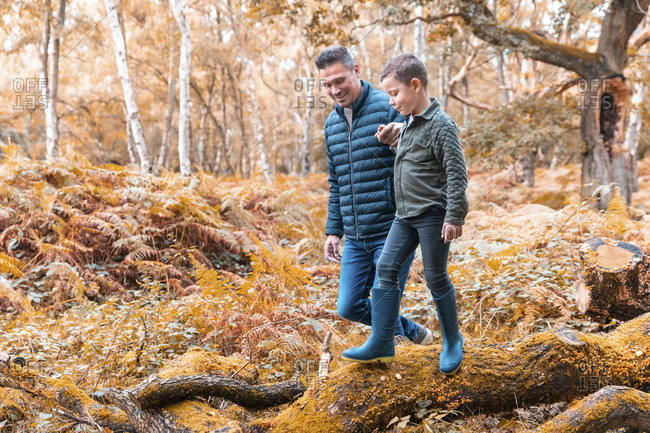 Father helping son walking on tree trunk in Cannock Chase park during autumn