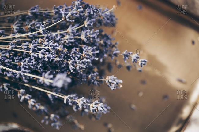 A sprig of lavender on a golden plate