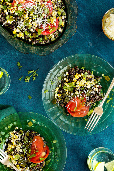 Overhead view of Spanish style vegetable manchego black quinoa served on two plates