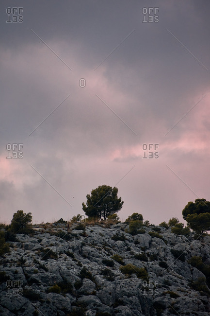 From below of amazing scenery of rough hill with trees growing under cloudy sundown sky