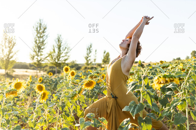 Serene female in dress standing in blossoming sunflower field while doing yoga and looking up