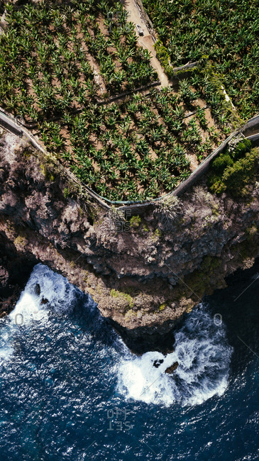 From above drone view of powerful foamy sea waves splashing against rough rocky cliff with green tropical plants in sunny day