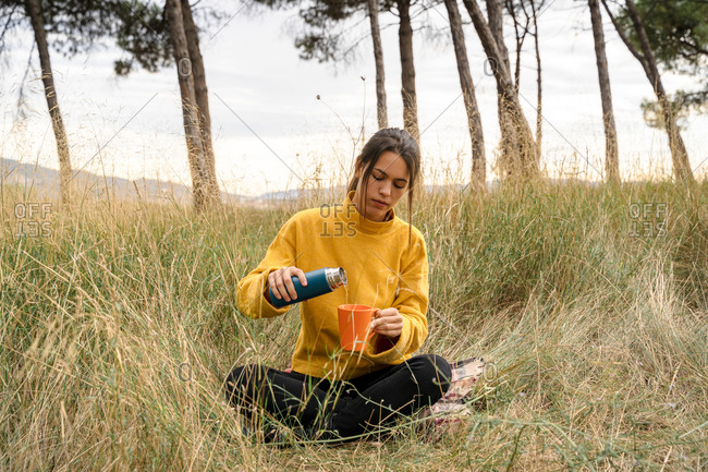 Serene female sitting on dry grass of meadow and pouring hot drink from thermos in cup while enjoying weekend in nature