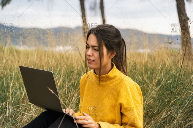 Pensive female freelancer sitting on blanket in field and working on project online while using laptop
