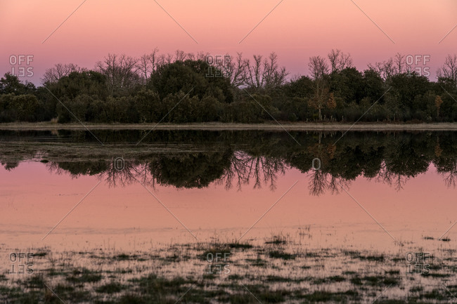 Lake landscape in oak forest at sunset with the trees reflected on the water.