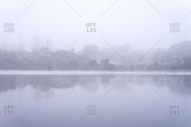 Frozen lake landscape in a mystery oak forest in a foggy day in winter with the trees reflected on the water.