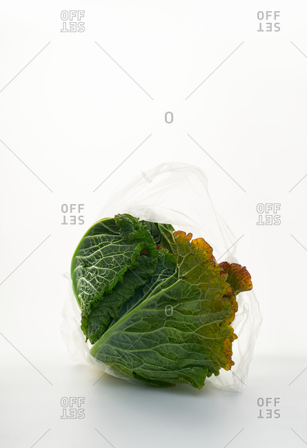 Still life with savoy cabbage in plastic bags backlit on white background
