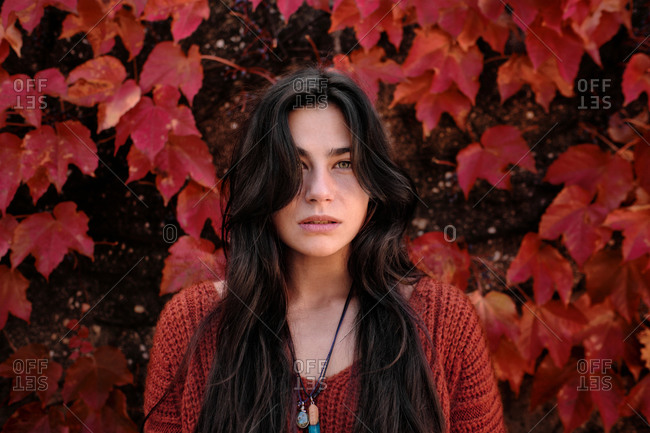 Unhappy young brunette in warm knitted sweater standing on a wall with red maple foliage in autumn day and looking at camera