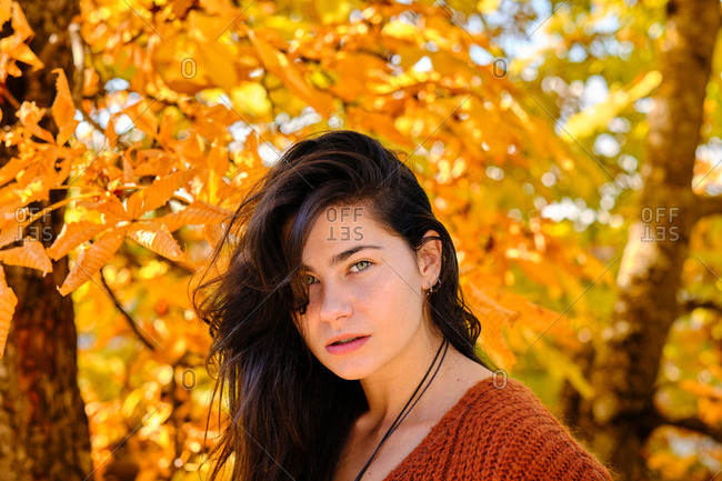 Young serious brunette female in red knitted sweater and jeans standing on fallen leaves and enjoying sunny autumn day in forest