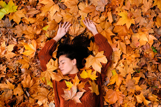 Top view of attractive relaxed young brunette in red knitted sweater and jeans lying on colorful fallen maple foliage while chilling in autumn park with eyes closed