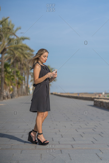 Side view of charming female in dress standing on embankment and messaging on cellphone on sunny day