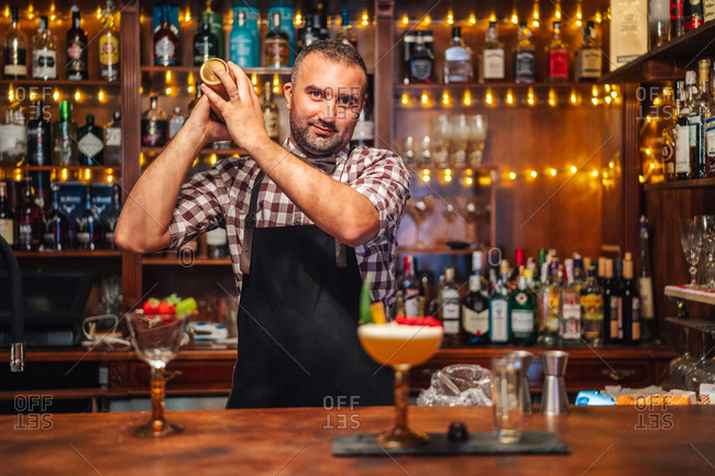 Excited middle aged mixologist in checkered shirt and apron looking at camera and mixing alcohol drink in shaker while standing behind counter with glasses in bar