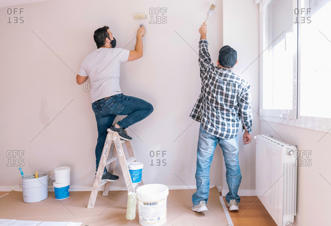 Back view of male painters covering wall with bright paint while renovating interior of apartment
