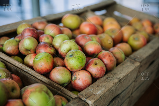 Wooden box filled with fresh natural bio organic apples placed on counter in local food market