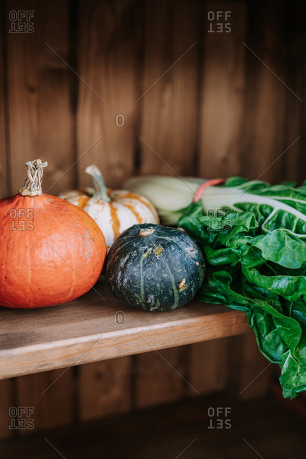 Various types of fresh pumpkins arranged near bunch of green chard leaves on wooden shelf