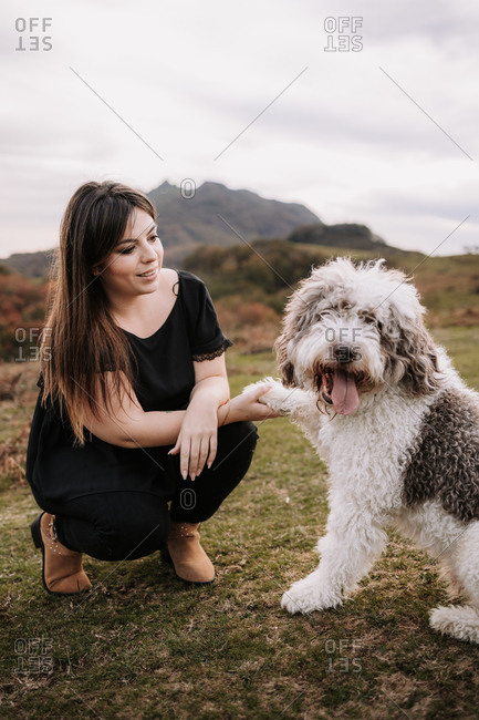 Cute fluffy Spanish Water Dog giving paw for smiling female owner while sitting together on grassy hill in mountains
