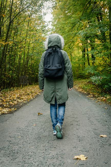 Back view of explorer in outerwear and with backpack walking along road in green woods during adventure