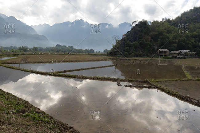 The reflection of a mountainous landscape off a flooded rice paddy