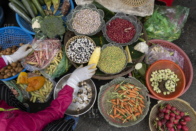 A variety of colourful beans and other fresh produce