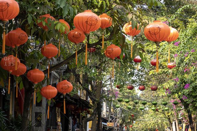 Vietnam, Asia - December 26, 2019: Paper lanterns on a tree lined avenue in Vietnam