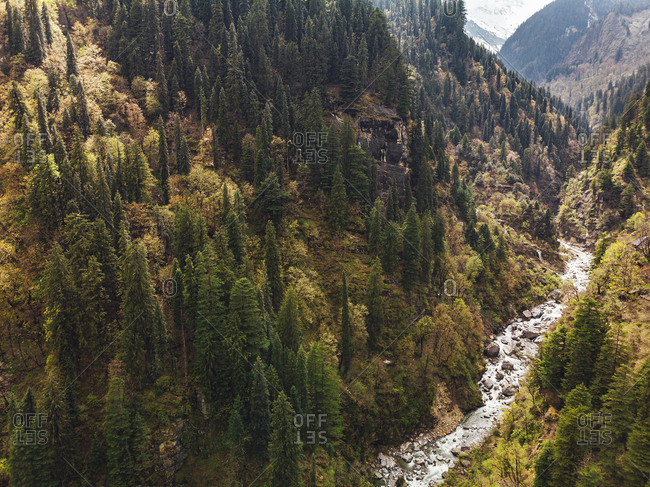 Drone view of clear stream flowing through forested valley in Himalayas