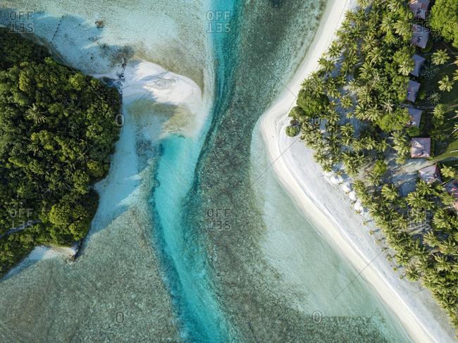 Maldives- Kaafu Atoll- Aerial view of trees growing along shore of Huraa island